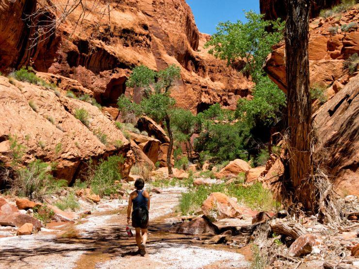 Hiking up canyon