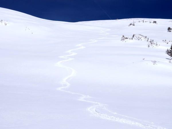 Fresh Colorado tracks