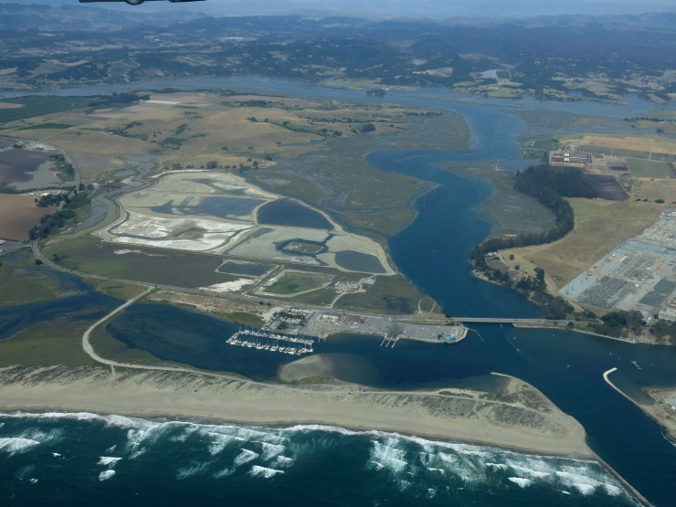 Elkhorn Slough from the air