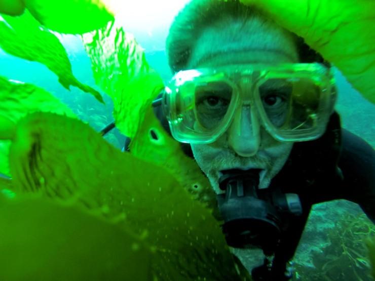 Mark in Dive Park