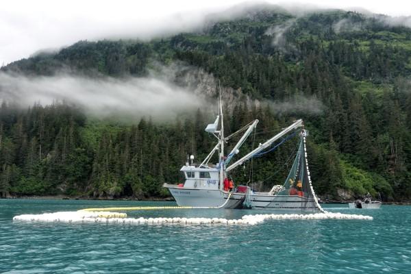 Fishing 2 (Large)