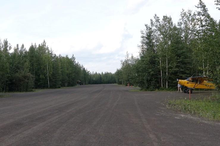 Piper camp (Large)